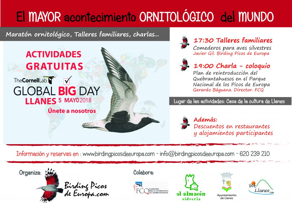 Global Big Day Prtograma
