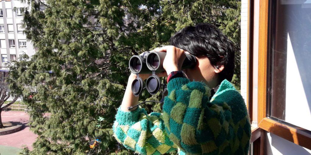 Urban Birdwatching